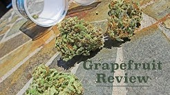Grapefruit - Strain Review