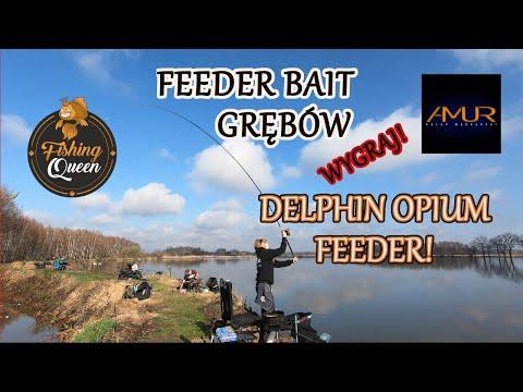 FEEDER BAIT GRĘBÓW || WYGRAJ DELPHIN OPIUM FEEDER