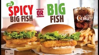 SnaQPaQ Burger King Spicy Big Fish Review