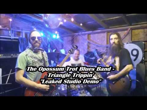 The Opossum Trot Blues Band - Triangle Trippin' (Leaked Studio Demo)