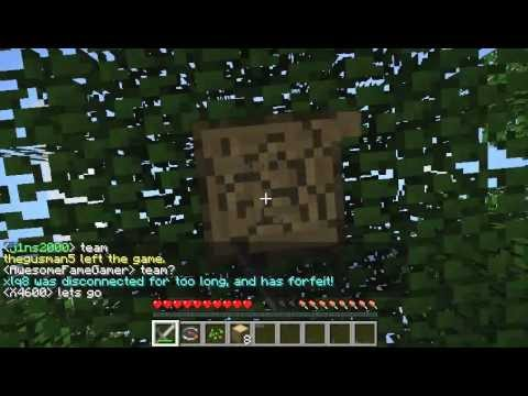 minecraft hunger games zocken