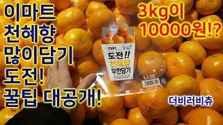 천혜향 3kg이 1만원!? 이마트 무한담기 꿀팁 대공개! 천혜향 꿀맛 먹방 ♡더비러비츄♡
