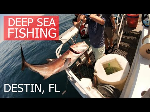 Deep Sea Fishing DESTIN, FLORIDA On The AMERICAN SPIRIT PARTY BOAT