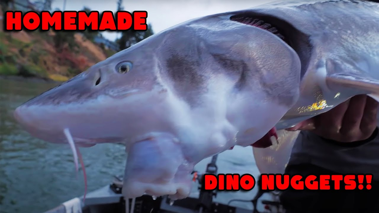 Download Homemade DINO NUGGETS & Catching 30 lb SALMON!!