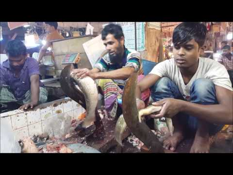 Indian long fin eel Fish Cleaning & Remove Skin in Fish Market| Part 01
