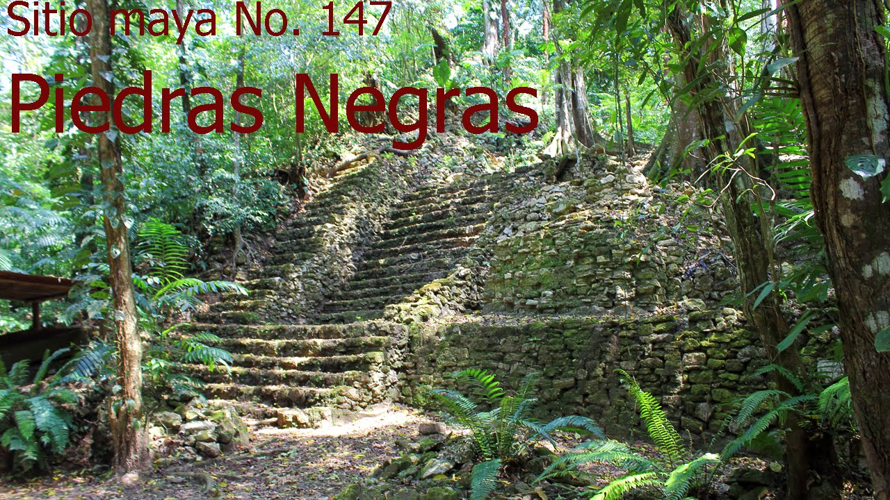 piedras negras latino personals Hot stuffs in us on 11-06-2017 rapidsharemix - search engine for shared files links millions of links in the database hundreds of thousands of new files every day.