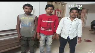 Teacher arrested for misbehaving with girl student in Baliguda
