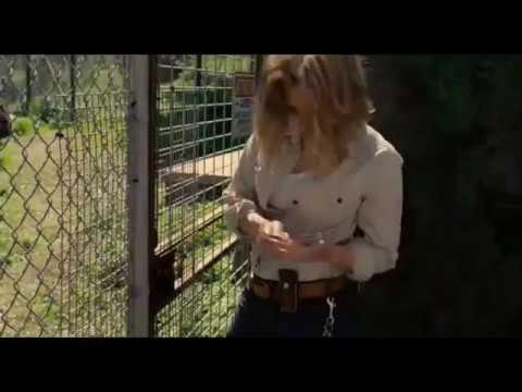 Мы купили зоопарк. Питер чинит замок-момент из фильма