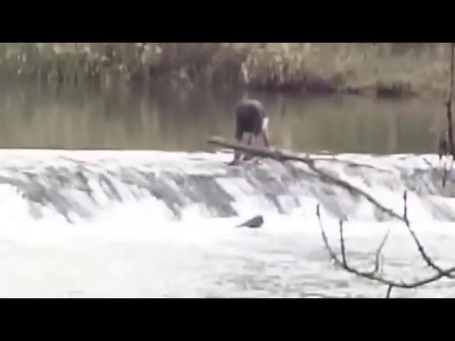 Un hombre semidesnudo se lanza al río Duero