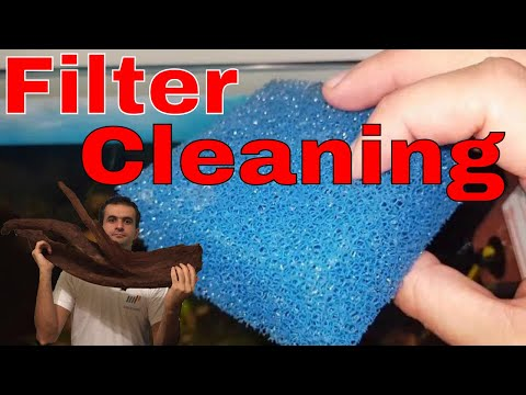 Juwel Bioflow M: Filter and powerhead cleaning for beginners