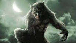 Phim Bom Tấn Chiếu Rạp Mới Nhất 2020 (Thuyết Minh) Bầy Sói Trả Thù