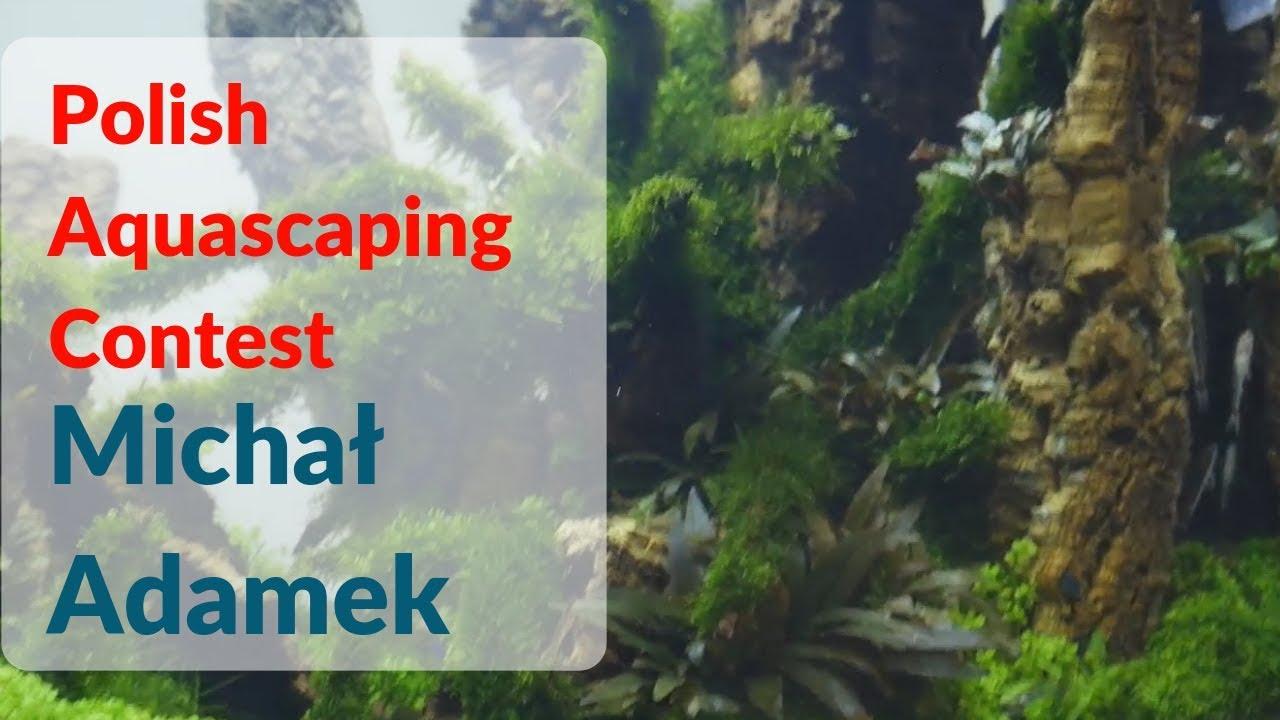 Aquascaping Contest Petfair 2017 Michal Adamek Youtube