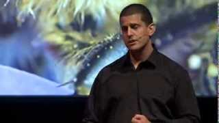 Life inside the beehive: Mat Welch at TEDxPerth
