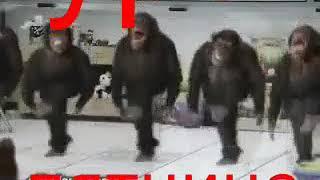 УРА ПЯТНИЦА!(2018)ПРИКОЛЫ