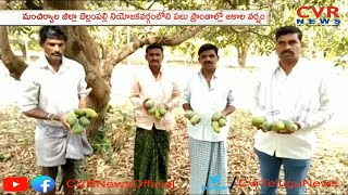 Huge Loss To Mango Farmers due to Unseasonal Rains in Mancherial District | CVR News