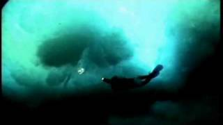 tomatespodridos.com The Wild Blue Yonder (Werner Herzog, 2005)