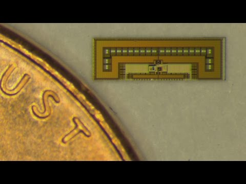 Stanford engineers design ant-sized radio to control 'Internet of Things'