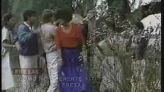 Fresas - Cómo no quererte a ti (video oficial)