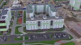 видео Голландский ландшафтный дизайн