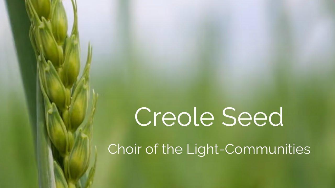 Creole Seed