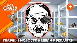 Тотальная слежка Лукашенко / Стабильность на грани / Оппозиция на ВНС