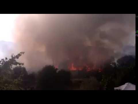 Incendio en Cepeda