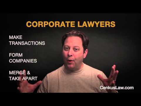 What is a Corporate Lawyer and What Do They Do? - The Startup Shepherd