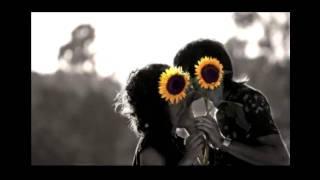 Amarnos - Felipe Peláez. Lyrics / Letra