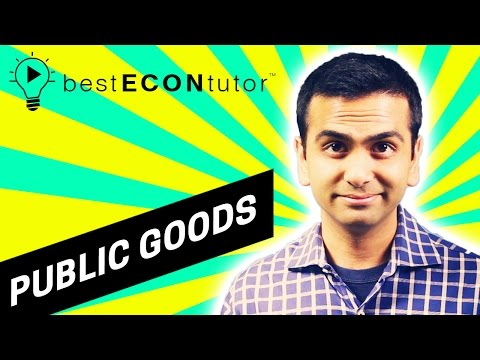 BEST Econ Tutor - Excludable, Rival, And Public Goods (Ch 17)
