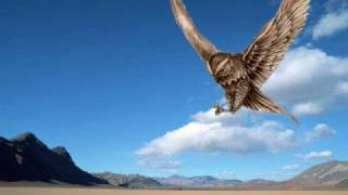 Karada - Last Flight Markus Schulz Return to Coldharbour Mix