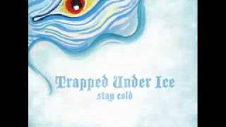 Watch Trapped Under Ice Skeleton Heads video