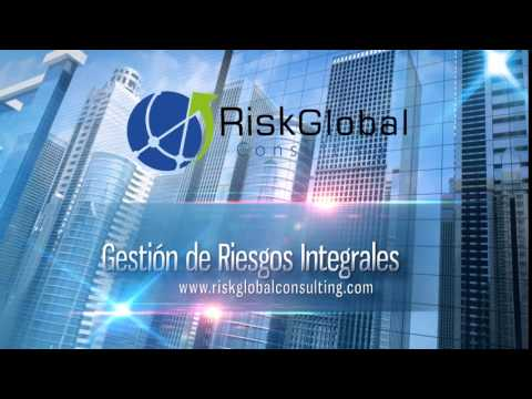 Risk global consulting