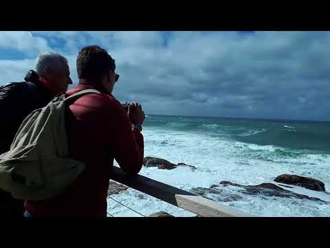 Bondi Beach to Bronte Beach Coastal Walk