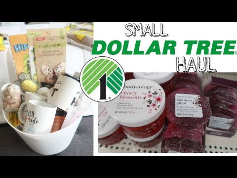 DOLLAR TREE HAUL!!!  WHAT DID I BUY??