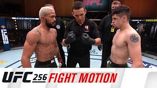 UFC 256: Fight Motion