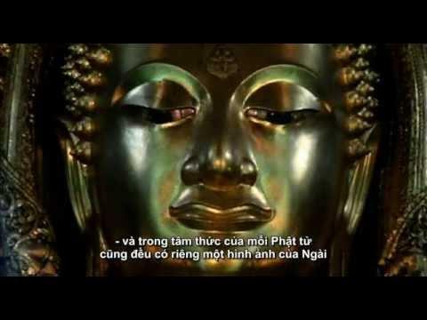 ▶ The Life of Buddha   Cuộc đời đức Phật   phụ đề tiếng Việt   full