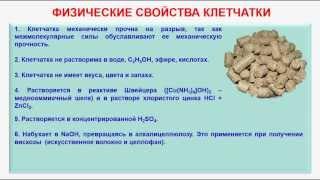 № 148. Органическая химия. Тема 21. Углеводы. Часть 22. Физические свойства клетчатки