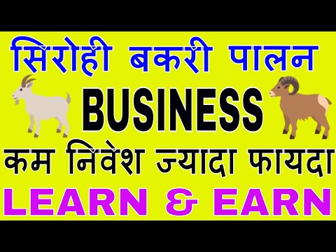 Low investment high profit business in india || SIROHI - Goat farming business idea in hindi.
