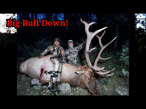 Big Bull Down   San Carlos Apache Reservation