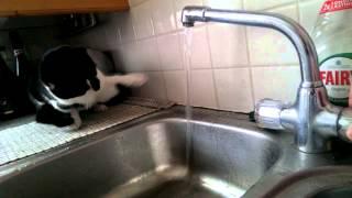видео Шило для сантехника