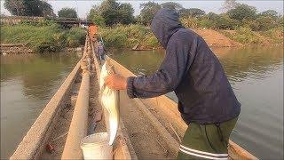 Catching fish in Mekong river - Cast net fishing