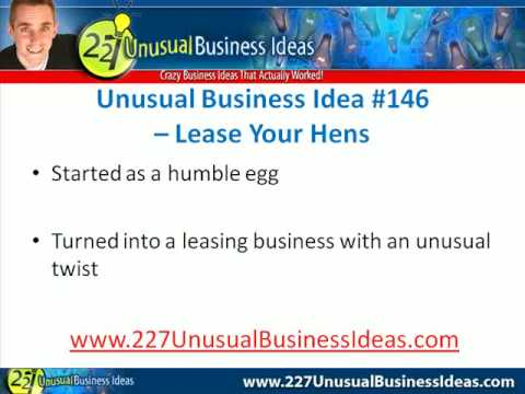 Unusual Business Idea Leasing Hens To Get Your Daily Eggs