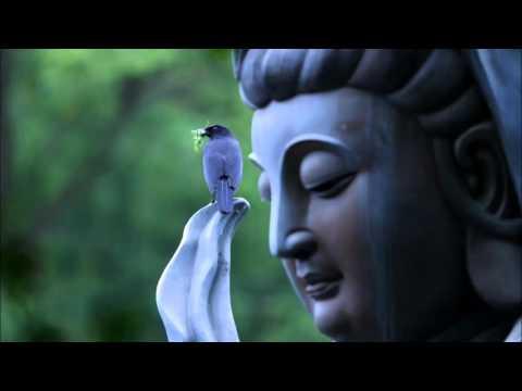 The Great Compassion Mantra in Sanskrit-Da Bei Zhou/大悲咒