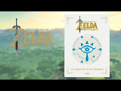 la création d'un prodige - collection Zelda