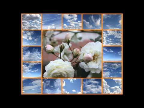 Семнадцать мгновений весны