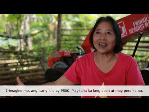 Organic Agriculture in the Philippines and their Success Stories