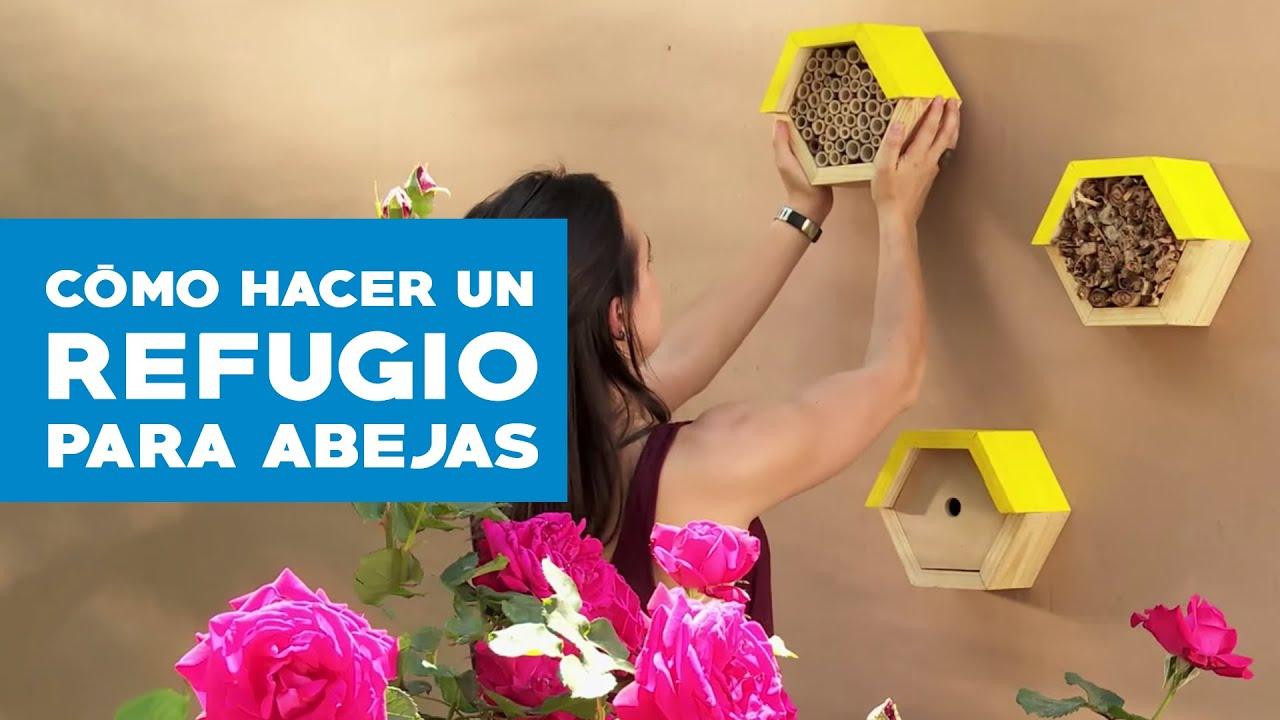 C mo hacer un refugio para las abejas youtube - Como hacer plano de casa ...