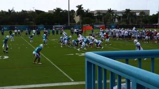 Miami Dolphins Training Camp 2015