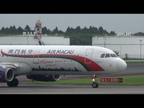 "Air Macau ""Macau Welcomes You"" Livery Airbus A321-200 B-MBM Landing at NRT 34R"