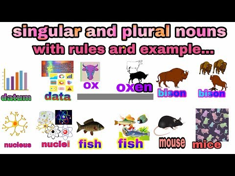 Singular And Plural Nouns Complete Study With Rules And Examples. Explanation In Hindi - Urdu.